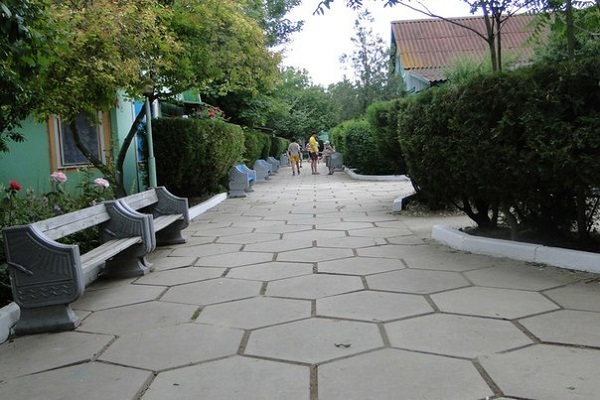 Аллея со скамейками на территории лагеря